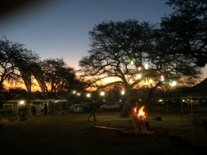 The (unofficial) 2015 Oppikoppi Awards